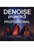 DENOISE projects 3 professional (英語版)